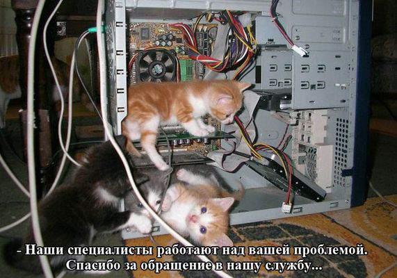 1442413220_prikol4.jpg