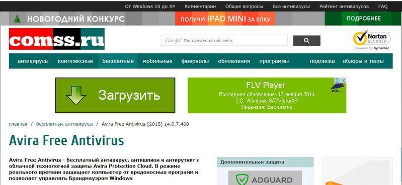 FLV Player.JPG