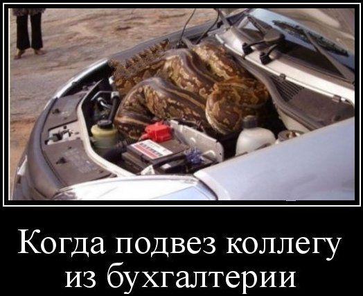 Когда подвез коллегу.jpg