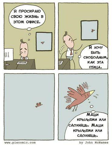 Комиксы-piecomic-мотивация-1248331.jpeg
