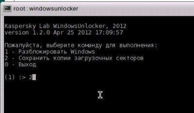 windowsunlocker2.